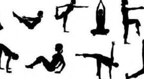Cours de renforcement musculaire